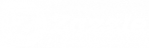 zazzle -